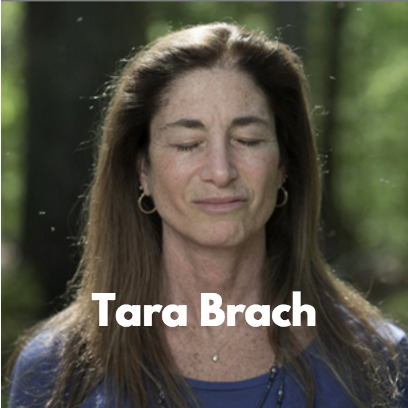 Connection Podcasts - Tara Brach